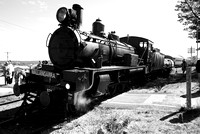 Southern Downs Steam